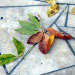 płytki tarasowe z marmuru